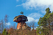 Mushroom shaped rock, Devil's Table, Hinterweidenthal, Rhineland-Palatinate, Germany, Europe