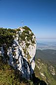 Summit of Benediktenwand mountain, Upper Bavaria, Alps, Germany, Europe