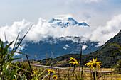 Antisana volcano, Napo province, Ecuador, South America