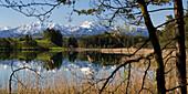 Fohnsee bei Iffeldorf, Osterseen, Herzogstand, Heimgarten, Oberbayern, Alpenvorland, Deutschland