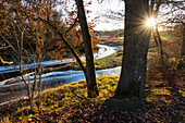 Evening light in late autumn at Loisach river, Upper Bavaria, Germany, Europe