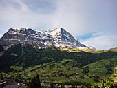 Blick von Grindelwald auf Eiger, Berner Oberland, Alpen, Schweiz, Europa