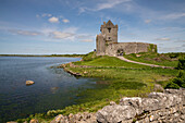 The ruins of Dunguaire Castle sits on the very edge of a bay on the Atlantic Ocean, Dungnaire Castle, County Galway, Ireland, Europe