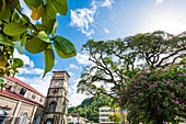Basilica, Cathedral of the Immaculate Conception, Castries, St. Lucia, Caribbean, West Indies