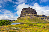 Green summer landscape around Lomagnupur mountain in Iceland, Europe