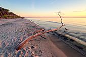 Sunset and driftwood on beach, Baltic Sea, Mecklenburg-Western Pomerania, Germany, Europe