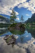 Small islands in Hintersee lake, Berchtesgadener Land, Bavaria, Germany, Europe