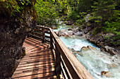 Wooden walkway leading along stream in the 'Enchanted forest', Berchtesgadener Land, Bavaria, Germany, Europe