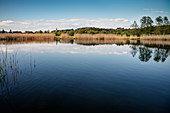 Illmen Lake, Sigmaringen District, Baden-Wuerttemberg, Germany