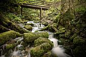 Kocher (Fluss) Ursprung in Unterkochen, Aalen, Ostalbkreis, Schwäbische Alb, Baden-Württemberg, Deutschland