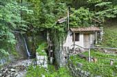 Old watermill near Kobarid, Goriska, Primorska, Slovenia, Central Europe, Europe