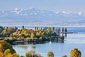 View over lake Constance to mountain Säntis in the Appenzell Alps in Eastern Switzerland, Uhldingen-Mühlhofen, Baden, Baden-Wuerttemberg, South Germany, Germany, Central Europe, Europe