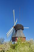 Windmill in Süddorf on the North Frisian Island Amrum, North Sea, Schleswig-Holstein, Northern Germany, Germany, Europe