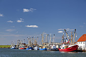 Fishing boats in the harbour of Büsum, Dithmarschen, Schleswig-Holstein, Northern Germany, Germany, Europe