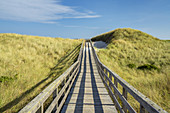 Weg durch die Dünen zum Strand, Kampen, Insel Sylt, Nordfriesland, Schleswig-Holstein, Norddeutschland, Deutschland, Europa