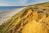 Beach at the Red Cliff  in Kampen, North Frisian Island Sylt, North Sea coast, Schleswig-Holstein, Northern Germany, Germany, Europe