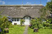 Friesenhaus in Westerland, Insel Sylt, Nordfriesland, Schleswig-Holstein, Norddeutschland, Deutschland, Europa