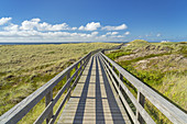 Way across the dunes to the beach in Kampen, North Frisian Island Sylt, North Sea coast, Schleswig-Holstein, Northern Germany, Germany, Europe