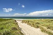 Weg durch die Dünen zum Strand, Rantum, Insel Sylt, Nordfriesland, Schleswig-Holstein, Norddeutschland, Deutschland, Europa