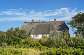 Thatched house in List, North Frisian Island Sylt, North Sea coast, Schleswig-Holstein, Northern Germany, Germany, Europe