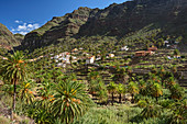 Houses and palm gardens in Valle Gran Rey, La Gomera, Canary Islands, Canaries, Spain