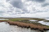 River Prerowstrom, Bay, Prerow, Fischland-Darß-Zingst, Mecklenburg-Vorpommern, Germany, Europe