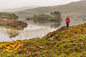 A female walker on the shore of a small lake, Inverpolly Nature Reserve, Highlands, Scotland, UK
