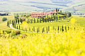 Farmhouse Baccoleno in spring, Asciano, Orcia valley, Siena province,Tuscany,Italy.