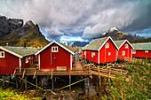 Iconic red fishermen's cabins (Rorbu), Reine, Nordland, Lofoten Islands, Norway