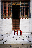Monks at the Tashichho Dzong a Buddhist monastery and fortress on the northern edge of the city of Thimphu, Bhutan, Himalayan Country, Himalayas, Asia, Asian.