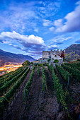 The fortress of Castel Grumello surrounded by vineyards, Montagna in Valtellina, province of Sondrio, Valtellina, Lombardy, Italy