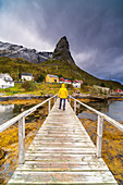 Hiker admiring Hammarskaftet mountain from the wood walkway, Reine, Nordland, Lofoten Islands, Norway