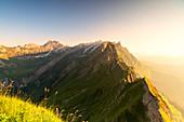 Mist on the rocky peak of Santis at sunset seen from Schafler, Appenzell Innerrhoden, Switzerland