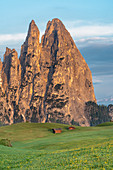 Alpe di Siusi/Seiser Alm, Dolomites, South Tyrol, Italy. Sunrise on the Alpe di Siusi with the peaks of Santner and Euringer