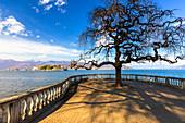 Isola Bella vom Seeufer von Stresa, Lago Maggiore, Piemont, Italien, Europa