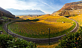 View of a bend in the railway on the way to the medieval Aigle castle and the surrounding autumnal vineyards. Canton of Vaud, Switzerland.