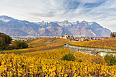 View of the medieval Aigle castle and the surrounding vineyards and roads in autumn. Canton of Vaud, Switzerland.