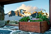 Mount Disgrazia reflected into the window of Del Grande Camerini Refuge at sunset, Chiareggio, Valmalenco, Province of Sondrio, Lombardy, Italy