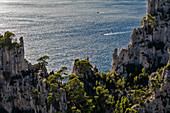 Marseille, Cassis, Provence, France, Europe. Landscapes of the Calanques