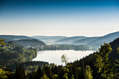 Morning mood with ground fog, Titisee, Black Forest, Baden-Wurttemberg, Germany