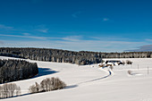 Snowy landscape and farmhouses, Thurner, Hinterzarten, Black Forest, Baden-Wurttemberg, Germany