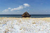 Beach in the Baltic Sea resort Wustrow in winter, Fischland-Darß-Zingst, Baltic Sea coast, Mecklenburg-Vorpommern, Northern Germany