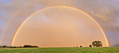 Rainbow after a thunderstorm, Großweil, Upper Bavaria, Bavaria, Germany