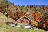 Mitter-Hütte am Gerstenrieder Kopf, Bavarian Prealps, Lenggries, Upper Bavaria, Bavaria, Germany