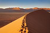 Menschen auf den Dünen in der Wüste Namib, Namib Naukluft Park, Namibia