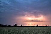 Blitze im Himmel über dem Spreewald, Brandenburg