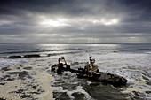 Schiffswrack Zeila an der Skelettküste, Henties Bay, Namibia