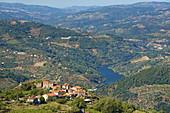Dorf auf einem Berg mit Blick über den Douro mit Wald und Weinbergen, Nordportugal, Portugal