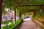 Weg im Park beim Palace Hotel do Buçaco, Nationalpark Buçaco, (Bussaco), Beiras, Zentralportugal, Portugal