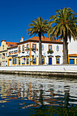 Colorful decorated houses and palm trees on the canal in Aveiro, Beira Litoral, Portugal